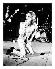 Iggy Pop on Knees