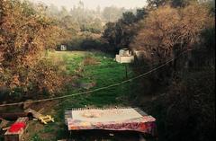 The Farm, Los Angeles, CA 1969