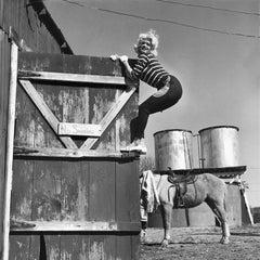 Jayne Mansfield, climbing a barn, Los Angeles, CA 1960