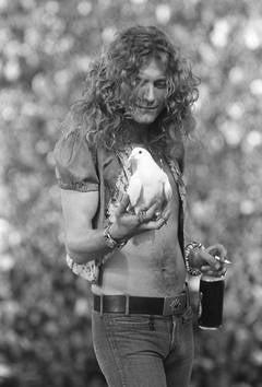 Robert Plant with Dove, San Francisco, CA