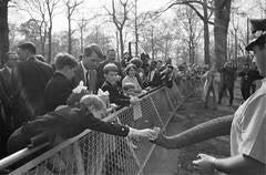 RFK & Sons, Bronx Zoo