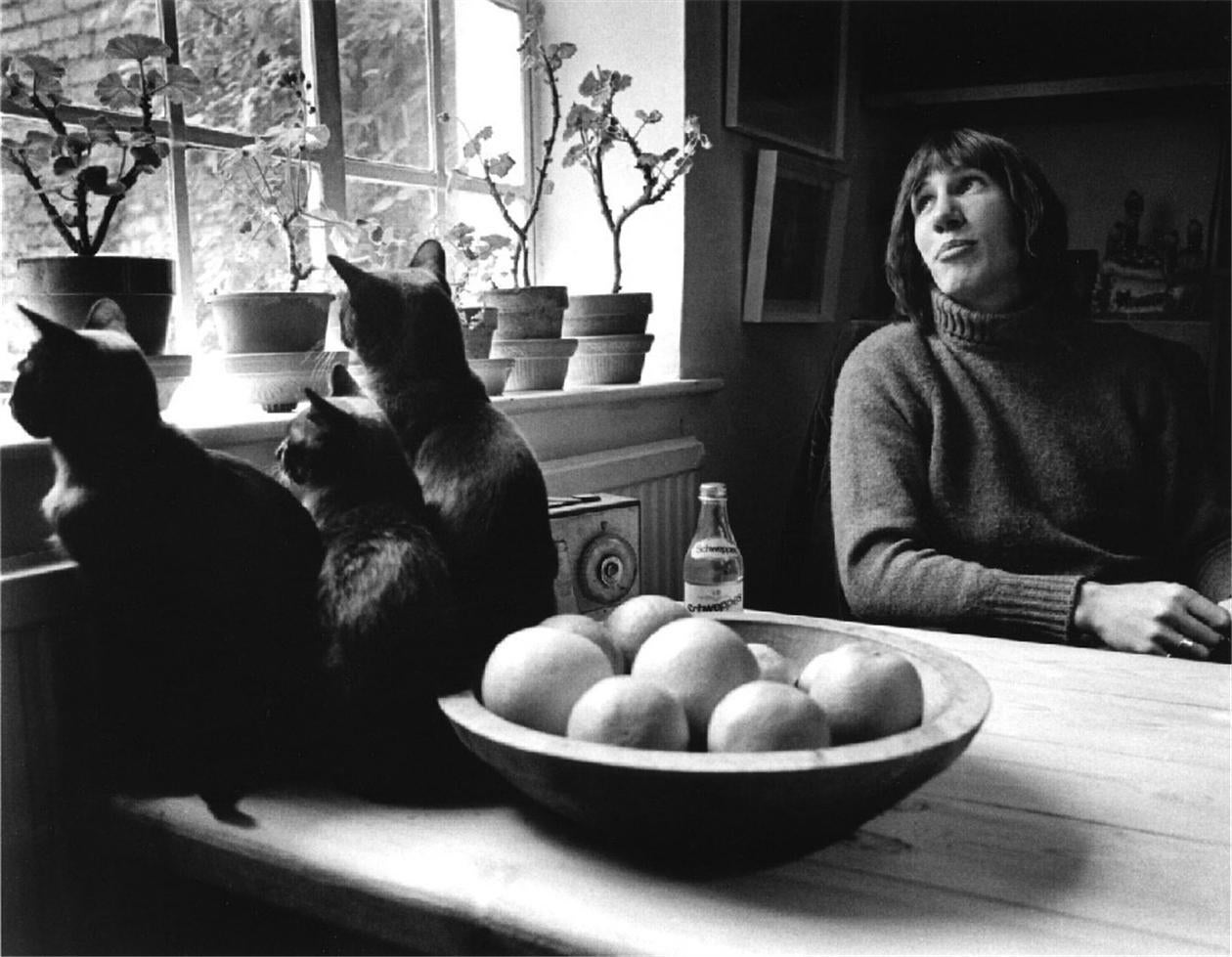 Roger Waters at Home, Islington, London