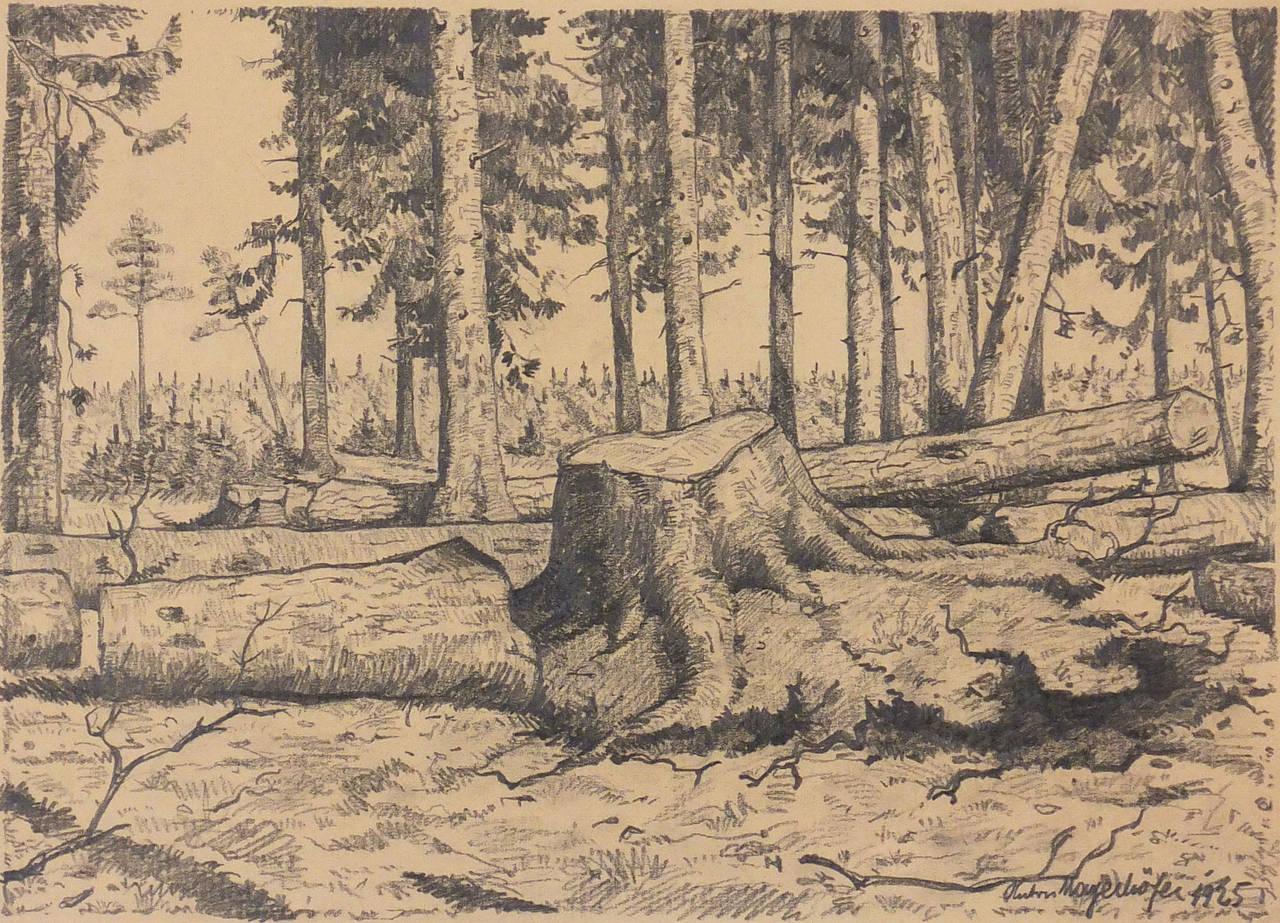 Antique landscape pencil drawing 1925