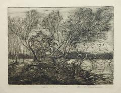Vintage Etching - Curving Trees by the Riverside