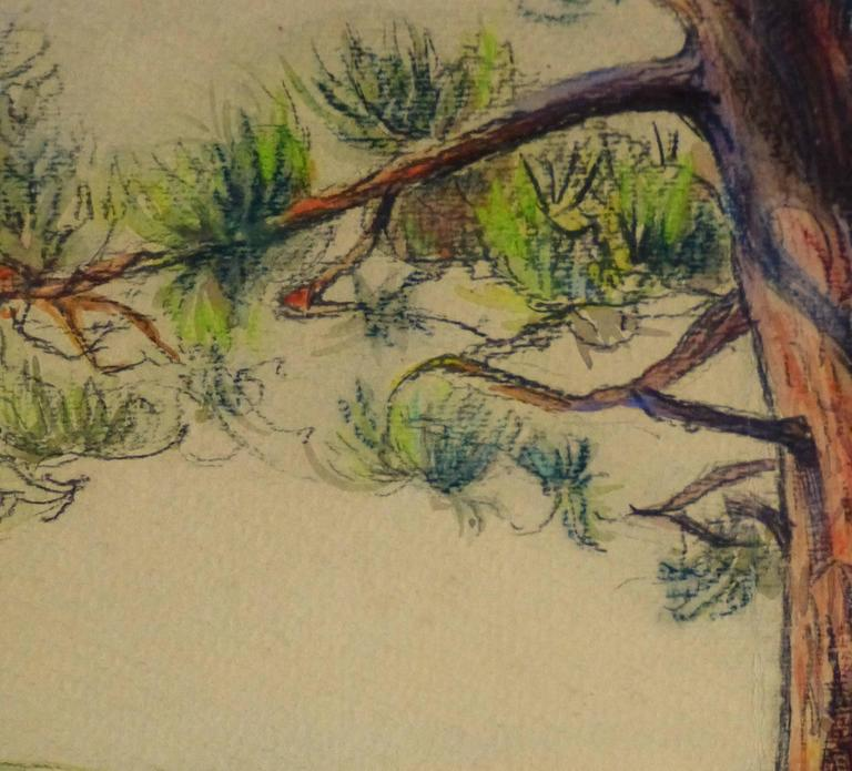 Watercolor & Charcoal - Pine Cove - Art by Unknown