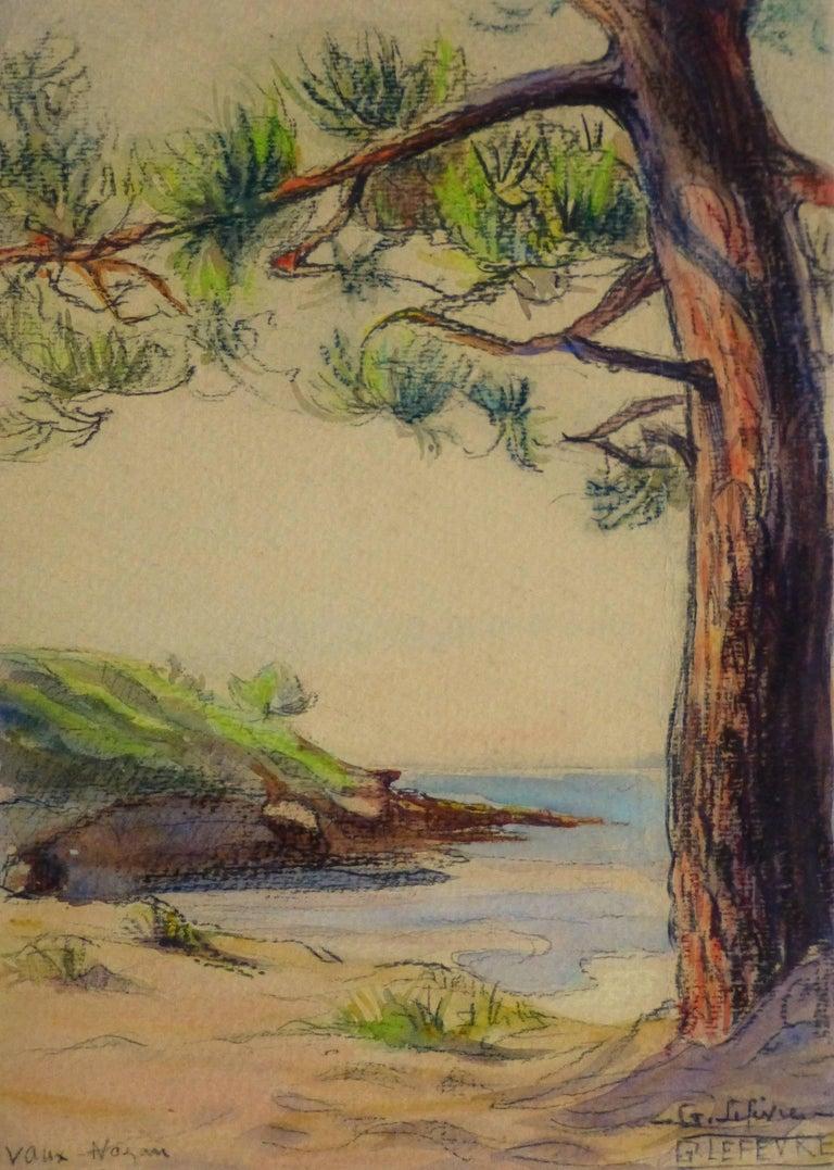 Unknown Landscape Art - Watercolor & Charcoal - Pine Cove