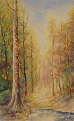 French Watercolor - Path to Autumn