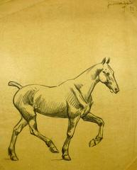French drawing of Horse
