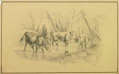 Watering Hole Drawing