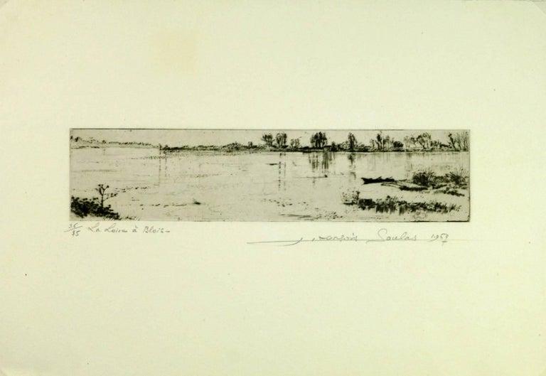 The Loire at Blois