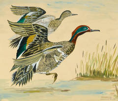Vintage French Gouache - Green Winged Teal Ducks