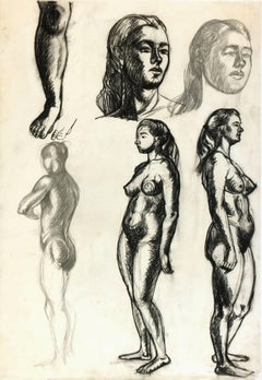 Nude Female Drawing