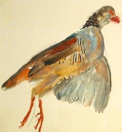 Vintage French Gouache - Game Bird Specimen