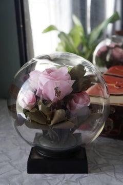 Branded Rose Pink (Globe)