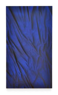 Black and Blue Velvet