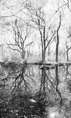 Central Park, New York City Black and White Photograph, Pond and Trees