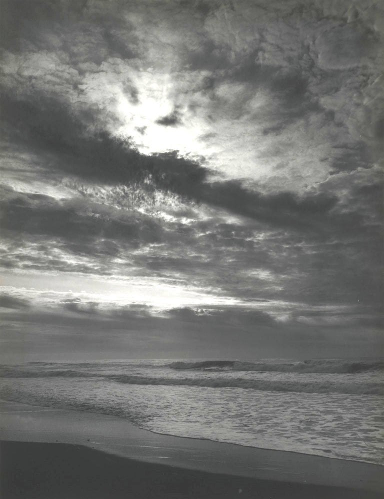 Ansel Adams Landscape Photograph - Sunset Prairie Creek Pacific Ocean