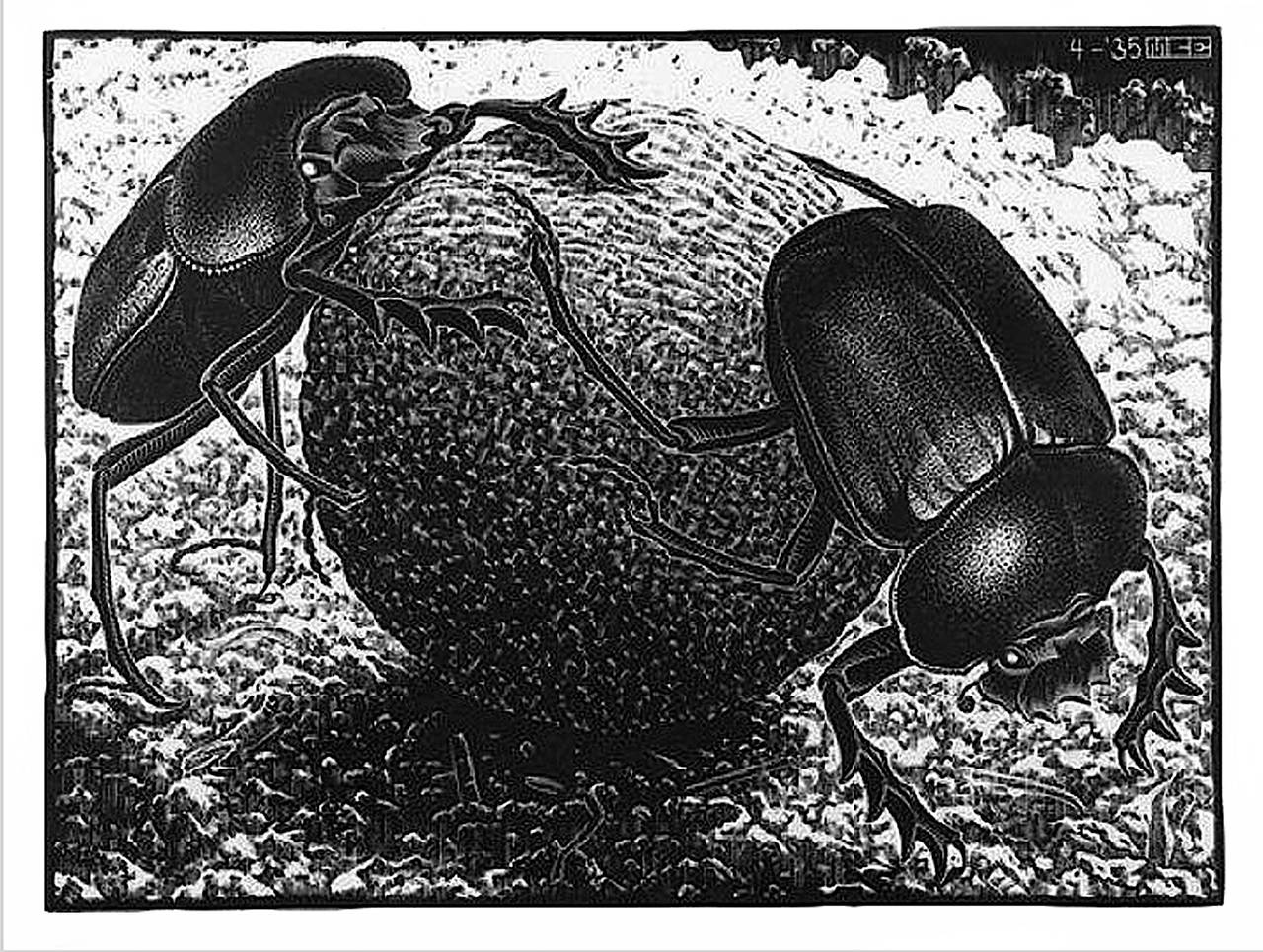 M C Escher Scarabs Print For Sale At 1stdibs