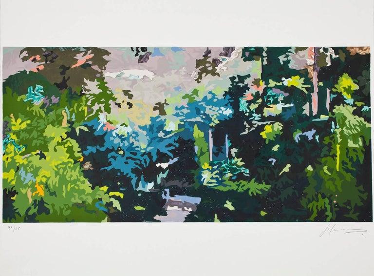 Hernan Salamanco Landscape Print - Amazonia