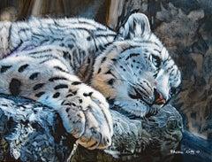 Attowa (Panthère des Neiges) / Attowa (Snow Panther)