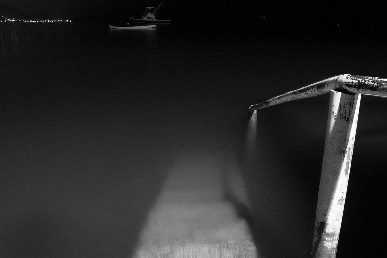 Brian Pearson Black and White Photograph - Deep Tropic I