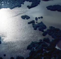 Ten Thousand Islands, Ten Thousand Islands, Everglades National Park, FL