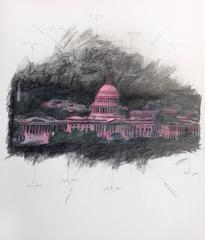 United States Capitol in Space, Pink
