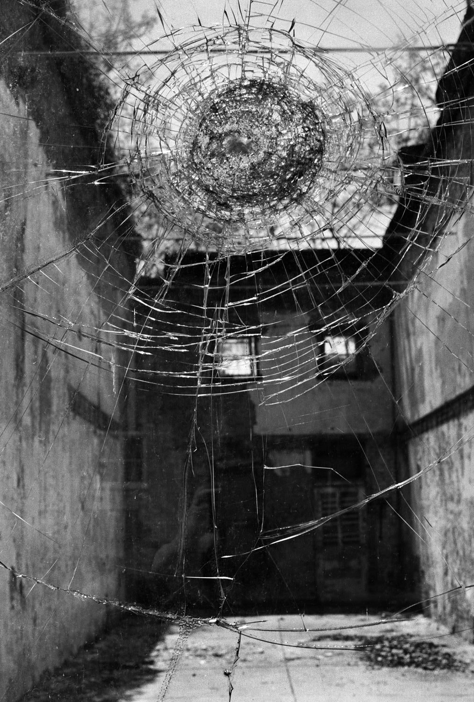 Debbie Fleming Caffery - Bullethole 1