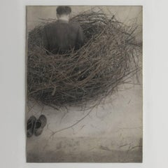 Study for Nest