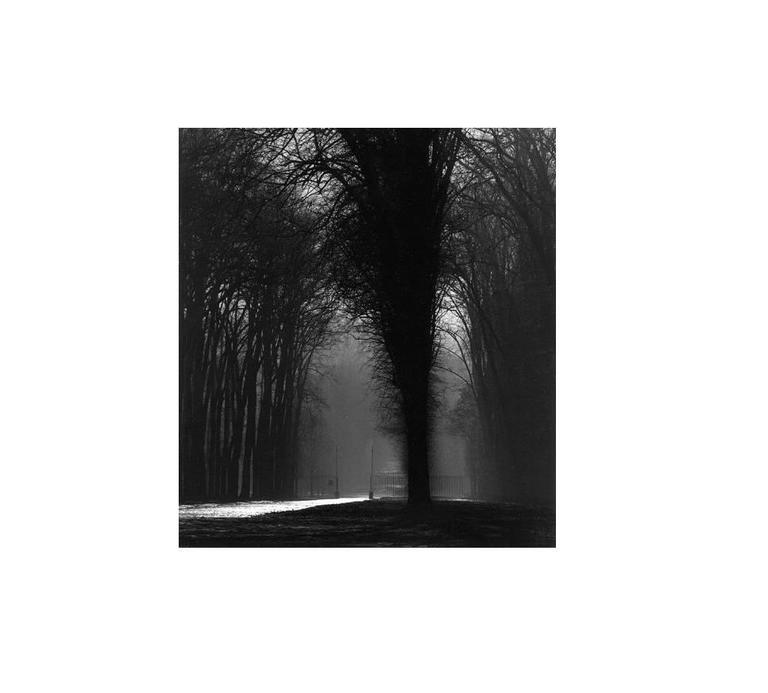 Michael Kenna Black and White Photograph - Silver Road, Versailles, France