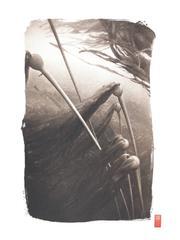 K66 ~ Bull Kelp Rising