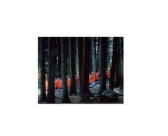 Monks Walking Through Cedars