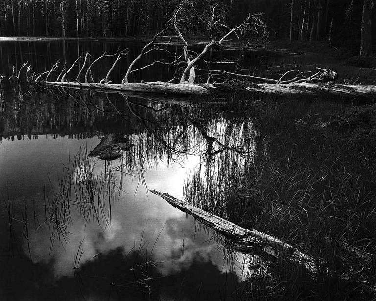 ansel adams 3 Ansel adams, art department: ben casey ansel adams was born on february 20, 1902 in san francisco, california, usa as ansel easton adams he is known for his work on ben casey (1961), electrode universe (2013) and ansel adams, photographer (1957).