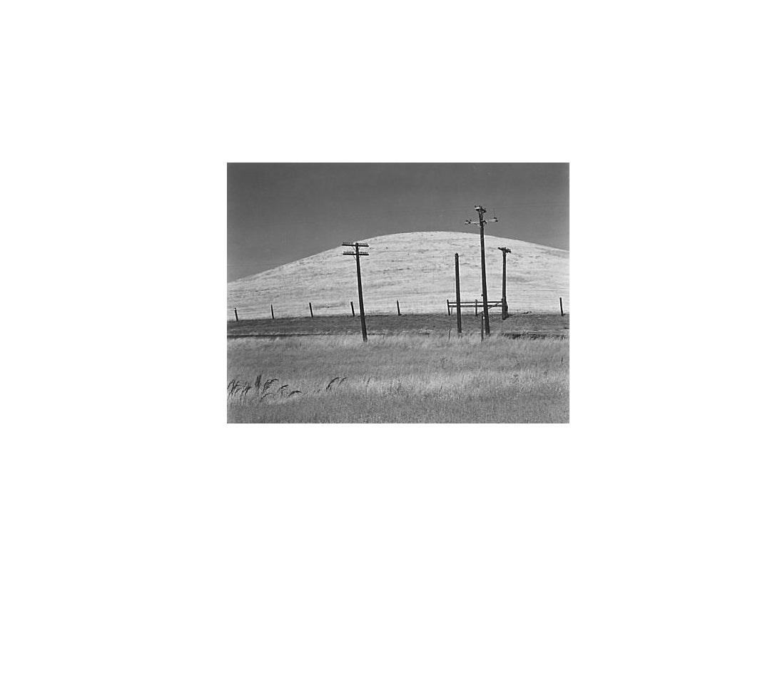 Edward Weston Black and White Photograph - Hill and Telephone Pole, Sonoma County
