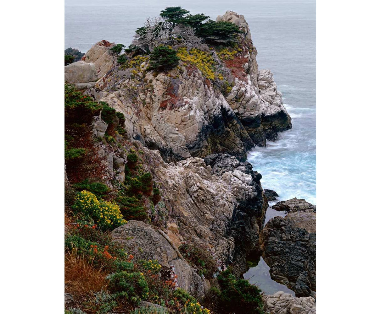 Kenneth Parker - Pinnacle Ridge, Point Lobos State Park, Point Lobos State Reserve, CA 1