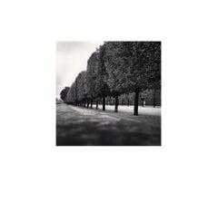 Tuileries Gardens, Study 3, Paris, France, 2011