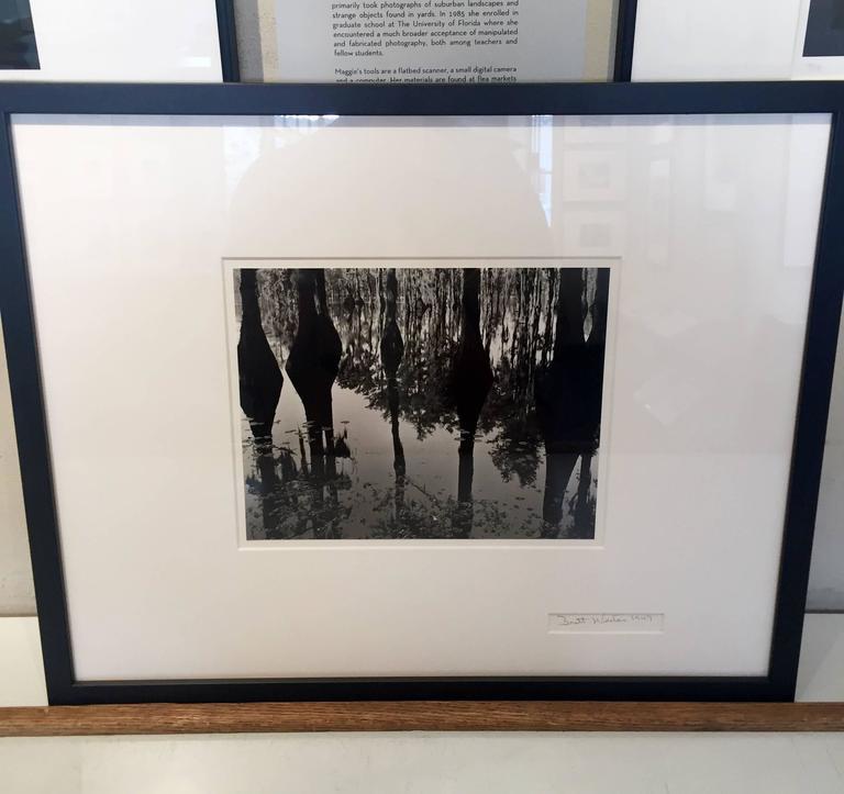 Swamp, North Carolina - Abstract Photograph by Brett Weston