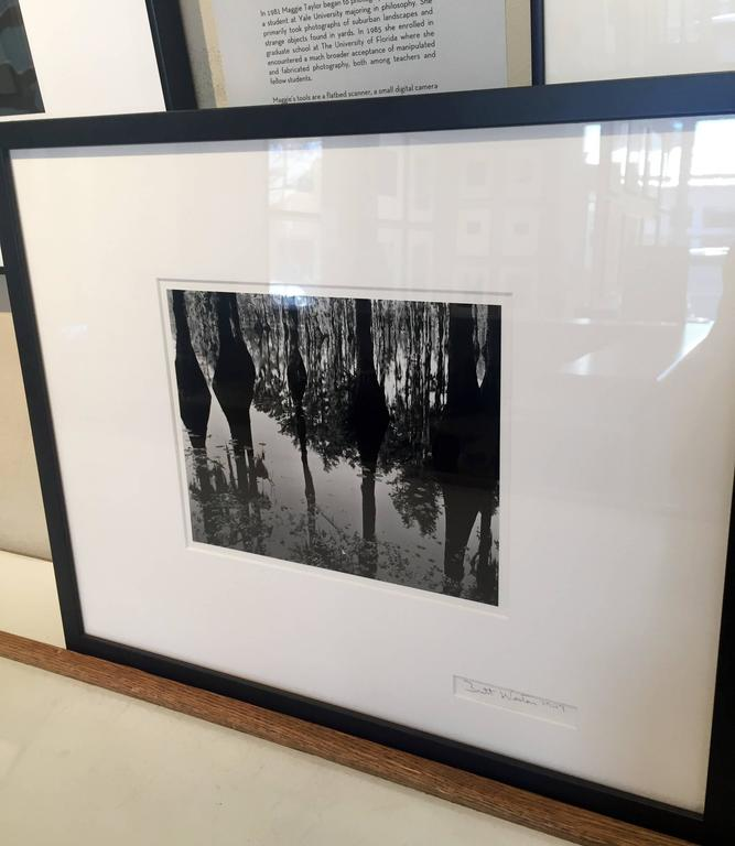 Swamp, North Carolina - Gray Black and White Photograph by Brett Weston