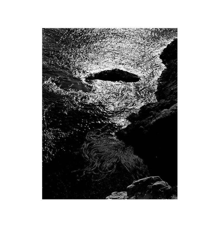 Edward Weston Black and White Photograph - Kelp, Point Lobos, 1940 (China Cove, Point Lobos, 1940)