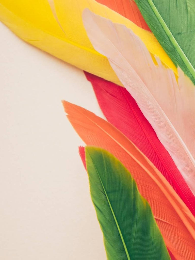 Maria Piessis Abstract Print - Feather or Not 8