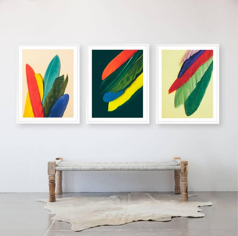 Feather or Not 3 - Print by Maria Piessis