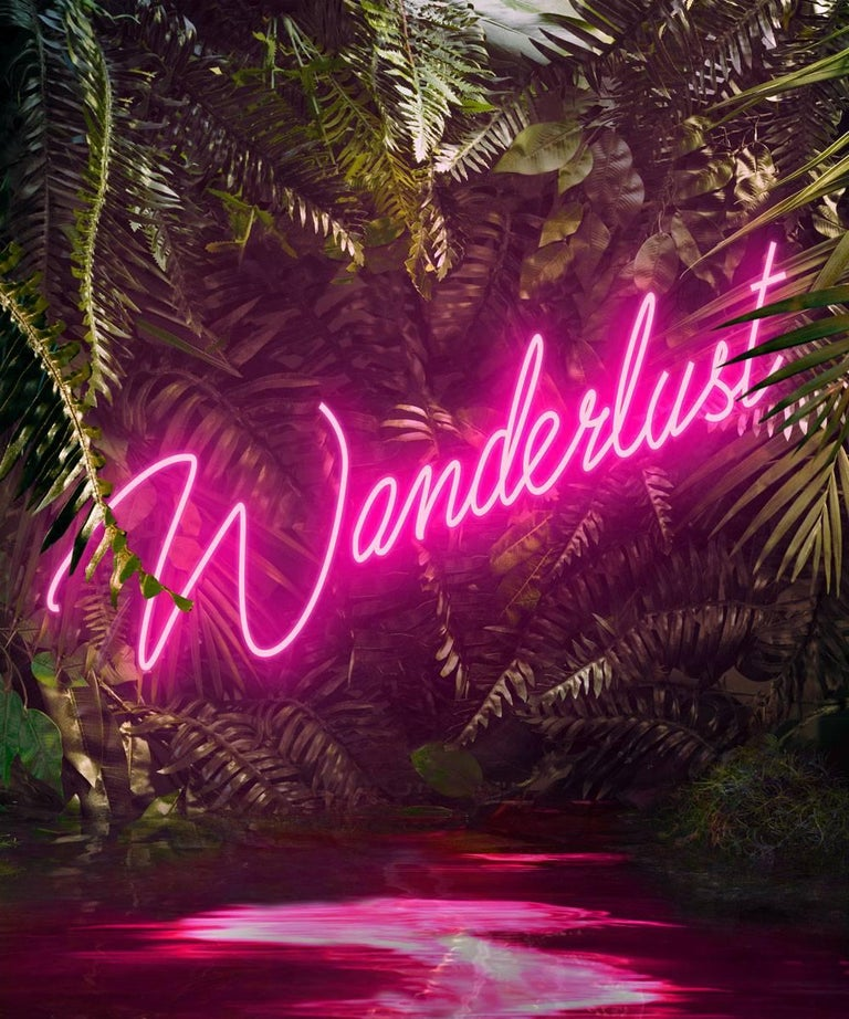 Disco in the Jungle: Wanderlust Pink