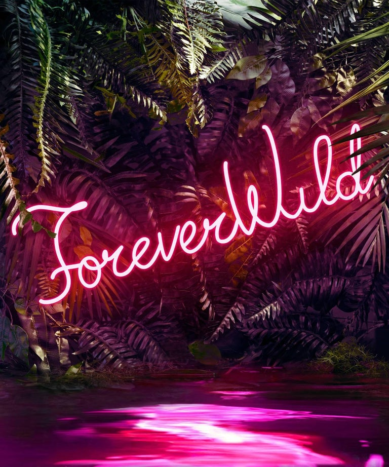 Disco in the Jungle: Forever Wild