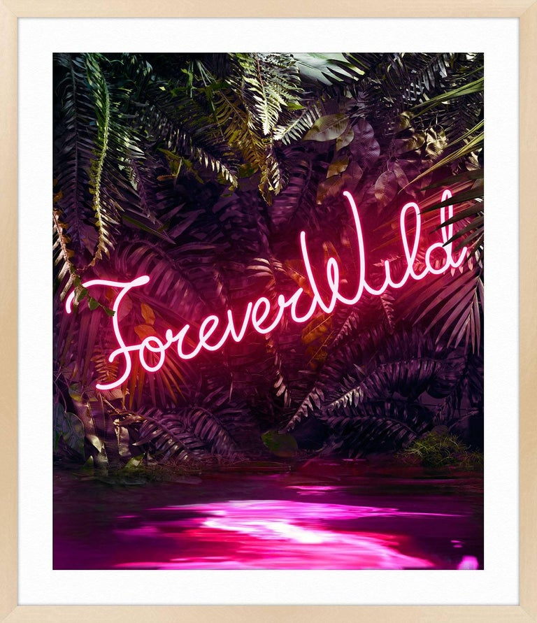 Disco in the Jungle: Forever Wild For Sale 2