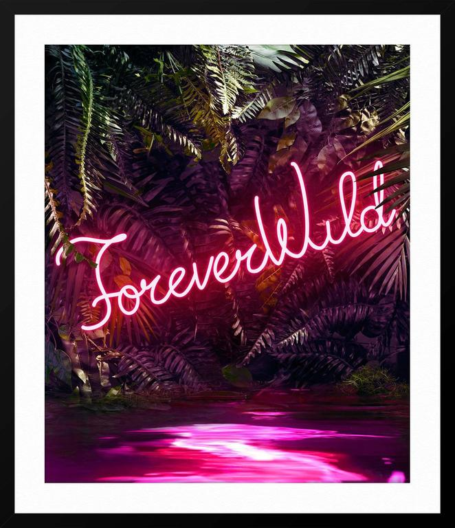 Disco in the Jungle: Forever Wild For Sale 1