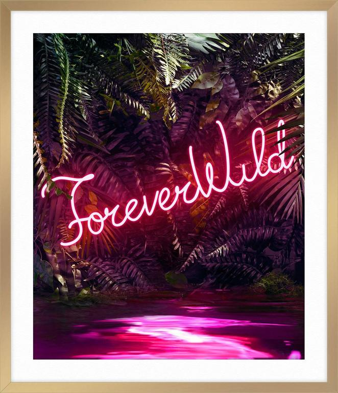 Disco in the Jungle: Forever Wild For Sale 5