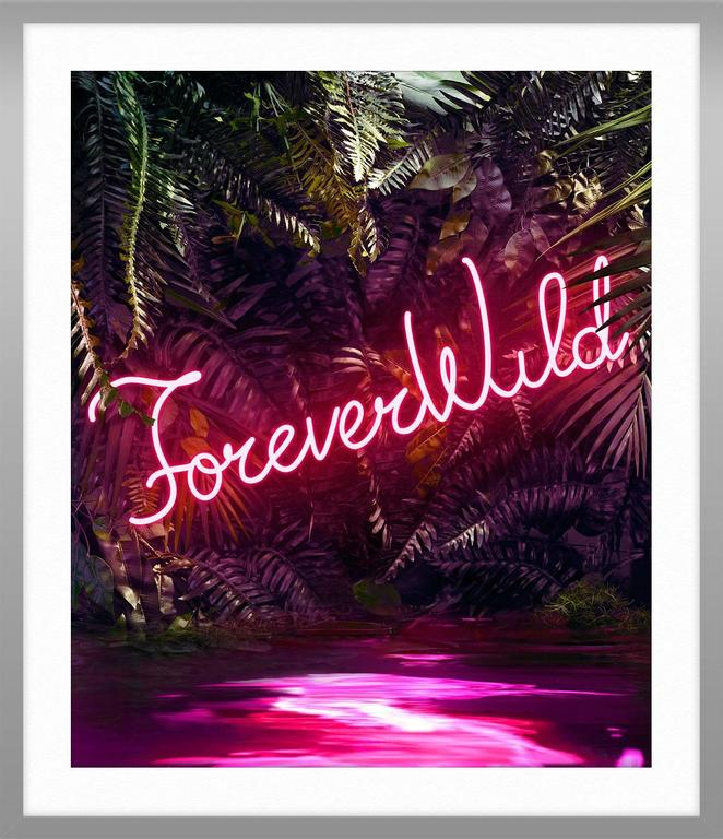 Disco in the Jungle: Forever Wild For Sale 4