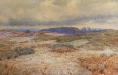 Matunuck Landscape