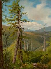 Hemlock, Kaaterskill Clove