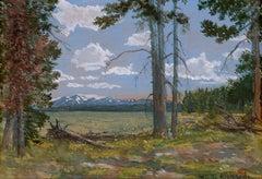 Yellowstone Lake (Mt. Sheridan in the Distance)